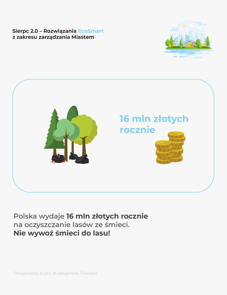Oczyszczanie lasów ze śmieci